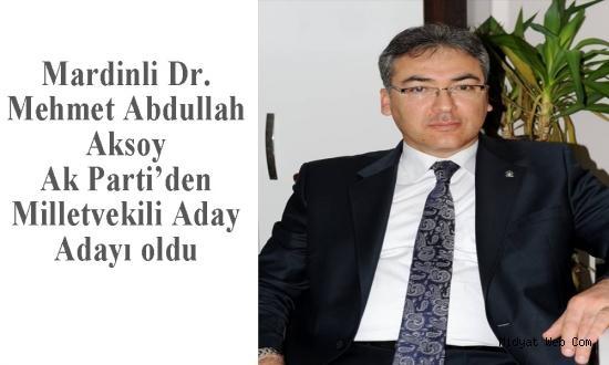 Ak Parti Aday Adayı Dr. Aksoy'dan Midyat Kadın Kollarına Ziyaret