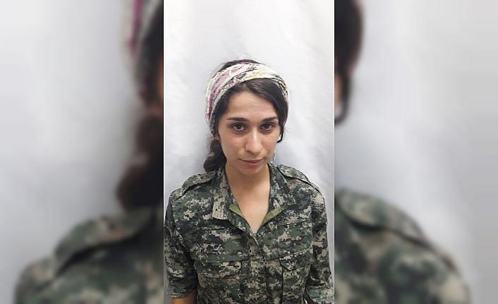 Şırnak'ta 3 kadın terörist teslim oldu