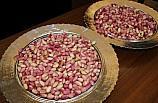 Gaziantep'te yılın ilk Antep fıstığı hasat edildi
