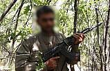 Diyarbakır'da PKK'lı bir terörist yakalandı
