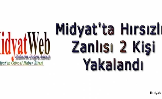 Midyat'ta bir evden ziynet eşyası ve para çaldıkları iddiasıyla gözaltına alınan 2 kişi tutuklandı.
