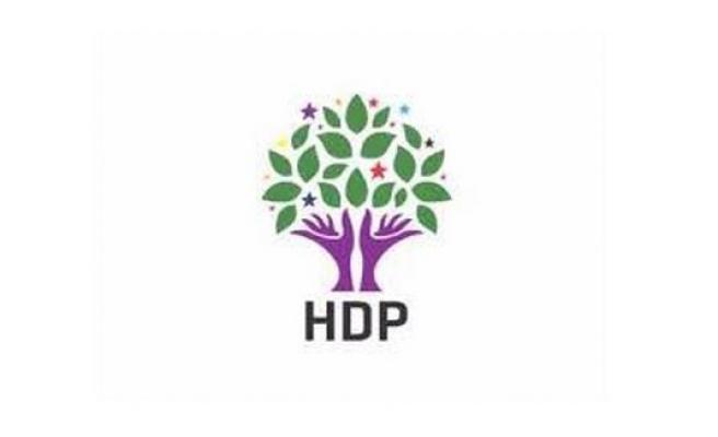 HDP Mardin Aday Adaylarını tanıttı
