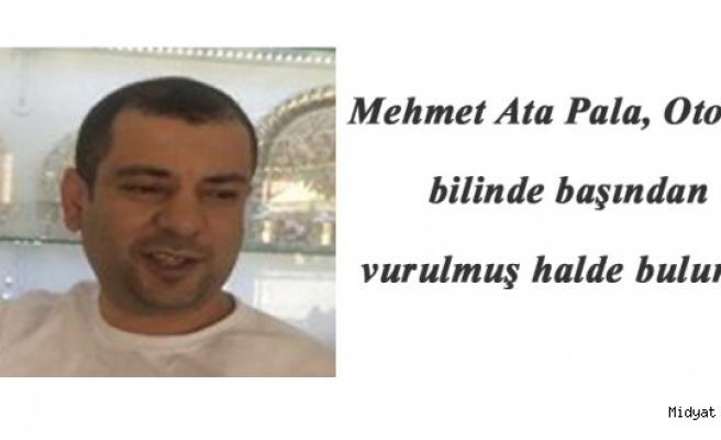 Midyat'ta Otomobilinde başından vurulmuş halde bulundu