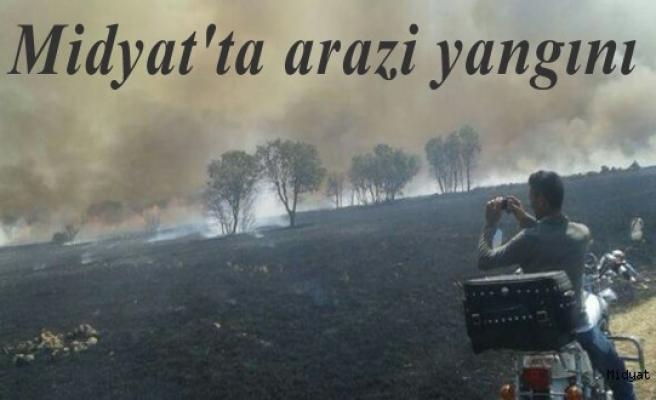 Midyat ilçesinde çıkan arazi yangınında yaklaşık 10 hektar arazi yandı.