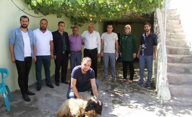 Görevlendirme yapılan belediyeden şehit yakınlarına kurbanlık