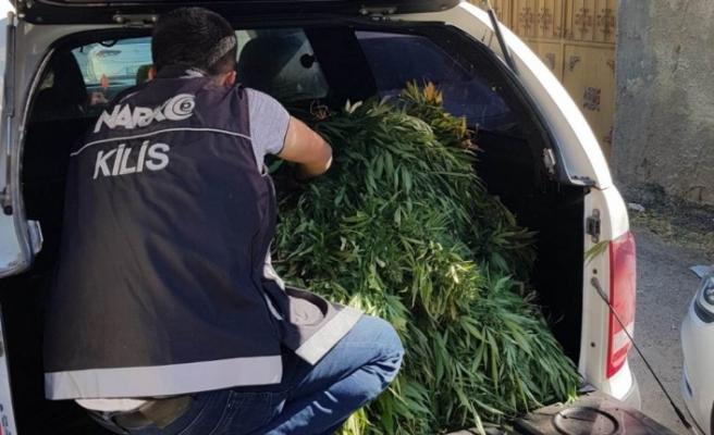Kilis'te uyuşturucu operasyonu