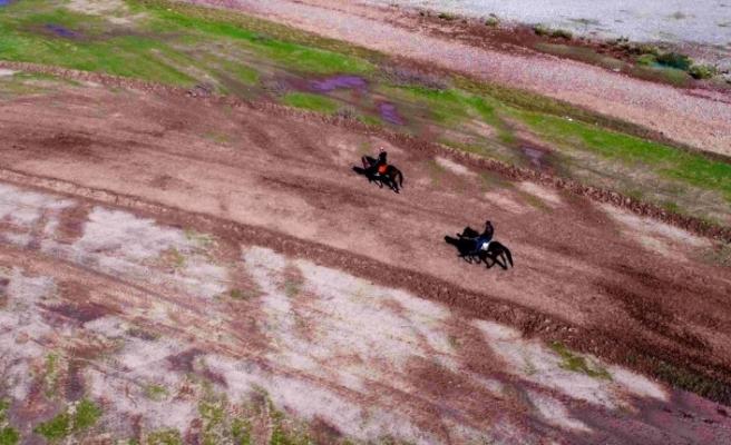 Diyarbakır'da rahvan atları kıyasıya yarıştı