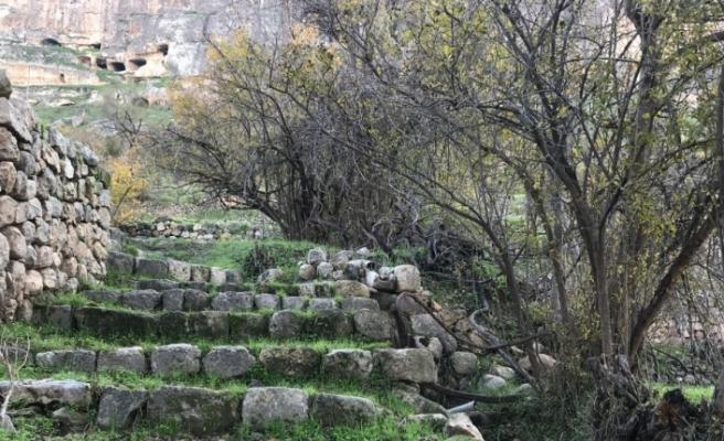 Hasankeyf'teki Tarihi Salahiye Bahçelerinde Sonbahar