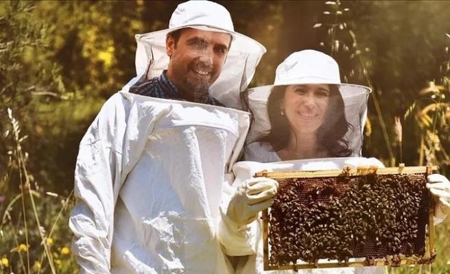 Arıların ürettiği propolisi dünyaya sunan Türk kadın girişimci