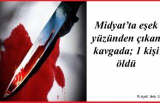 Midyat'ta Eşek Yüzünden Çıkan Kavgada 1 Kişi...