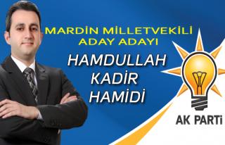 Hamdullah Kadir HAMİDİ - Ak Parti Mardin Milletvekili...