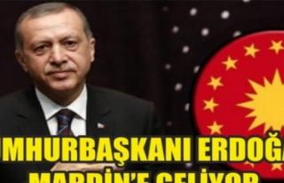Cumhurbaşkanı Erdoğan Midyat'a Geliyor