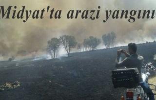 Midyat ilçesinde çıkan arazi yangınında yaklaşık...
