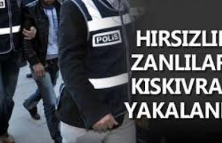 Midyat'ta hırsızlık zanlısı 7 kişi yakalandı