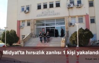 Midyat'ta hırsızlık zanlısı 1 kişi yakalandı