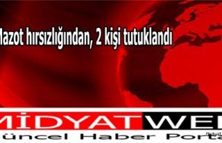 Midyat'ta mazot hırsızlığından, 2 kişi tutuklandı