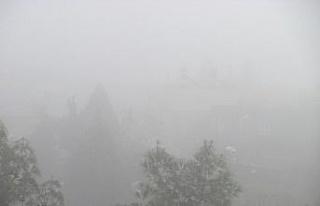 Araban'da sis etkili oldu