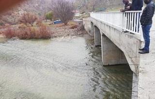 Kulp'ta vatandaşlar talep ettikleri köprüye kavuştu