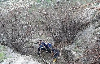 Kayalıkta mahsur alan keçiler kurtarıldı