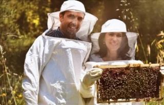 Arıların ürettiği propolisi dünyaya sunan Türk...