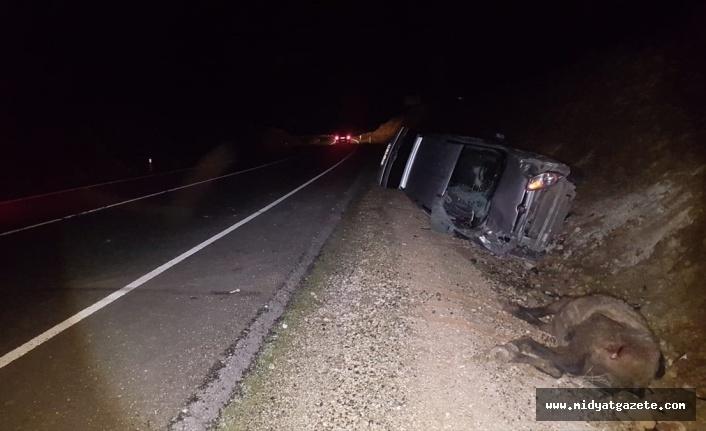 Midyat'ta Ata Çarpan Araçta 3 Kişi Yaralandı